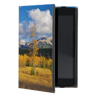 Blue skies and clouds above a meadow iPad mini case
