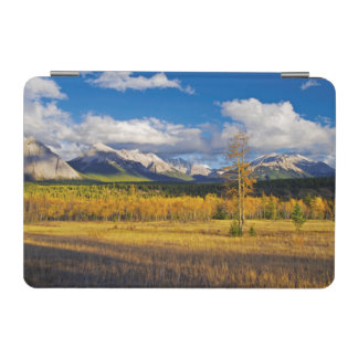 Blue skies and clouds above a meadow iPad mini cover