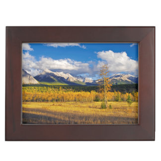 Blue skies and clouds above a meadow keepsake box