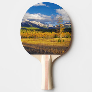 Blue skies and clouds above a meadow ping pong paddle