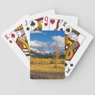 Blue skies and clouds above a meadow playing cards