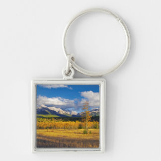 Blue skies and clouds above a meadow Silver-Colored square key ring