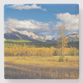 Blue skies and clouds above a meadow stone beverage coaster