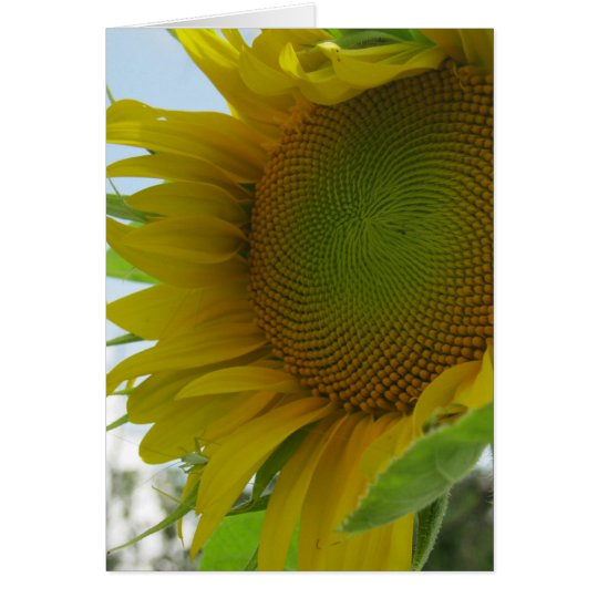 Blue Skies and Friendly Flower Sunflower Card