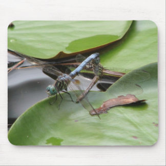 Blue Skimmer Dragonfly Pair Mouse Pad