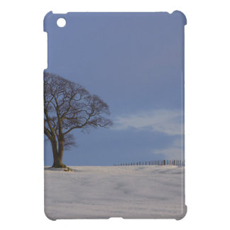 blue sky and snow iPad mini case