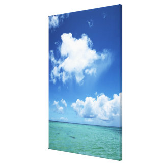 Blue Sky and the Sea Canvas Print