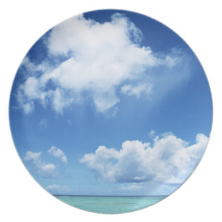 Blue Sky and the Sea Plate