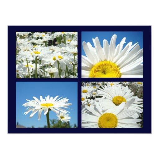 Blue Sky Daisy Flowers Art Prints White Daisies Photo Print