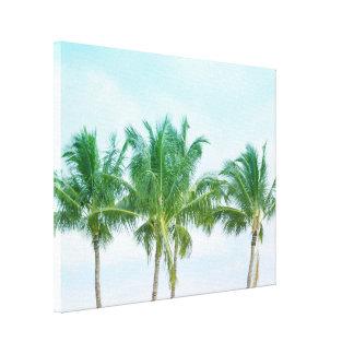 Blue Sky Hawaii Palm Trees Canvas Print