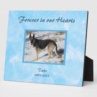 Blue SKy Pet Memorial Photo Plaque