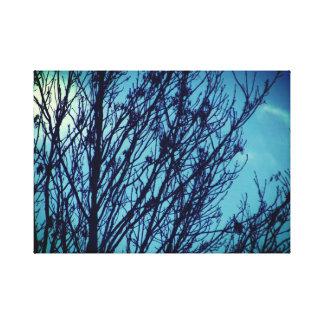 Blue sky tree canvas