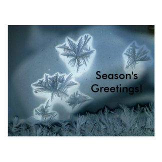 Blue Snow Postcard