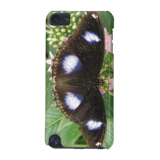 Blue Spotted Butterfly iPod Case