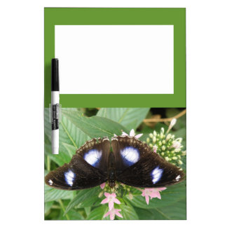 Blue Spotted Butterfly Memo Board