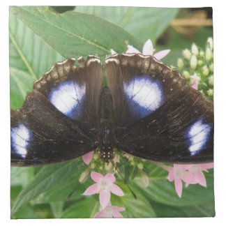 Blue Spotted Butterfly Napkin