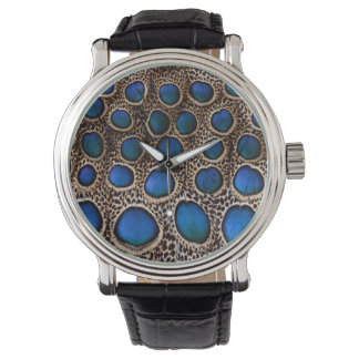 Blue spotted peacock pheasant watch