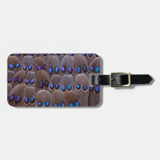 Blue spotted pheasant feather luggage tag