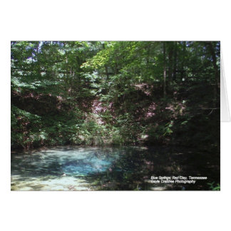 Blue spring at Red Clay Card