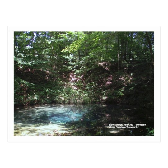 Blue Spring at Red Clay, Tennessee Postcard