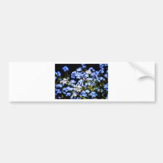 Blue Spring Bumper Sticker