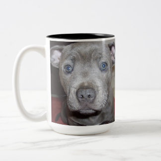 Blue Staffordshire Bull Terrier Puppy, Two-Tone Coffee Mug