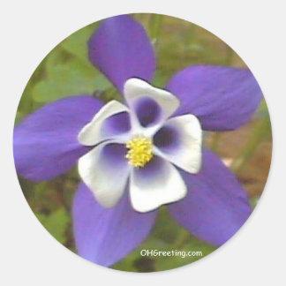 Blue Star MS  Sticker