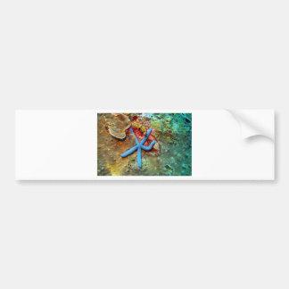 Blue starfish coral sea bumper sticker