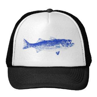 blue striped bass mesh hats