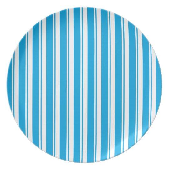 blue striped porcelain plate
