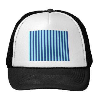 Blue Stripes Cap