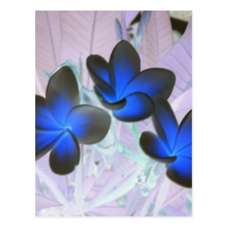 Blue Stylish Flower Postcard