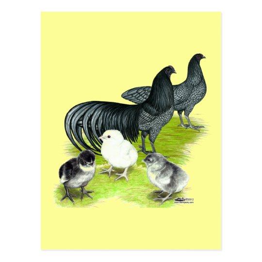 Blue Sumatra Family Postcard