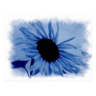 Blue Sunflower Postcard