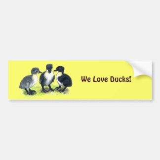Blue Swedish Ducklings Bumper Sticker