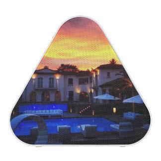Blue swimming pool Bluetooth  Pieladium Speaker