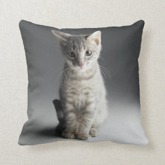 Blue Tabby Kitten Cushion