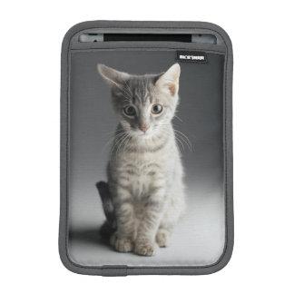 Blue Tabby Kitten iPad Mini Sleeve