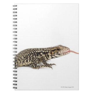 Blue tegu - Tupinambis merianae Spiral Notebook