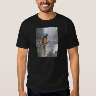 Blue Throated Macaw with Waterfall Shirts
