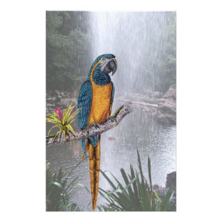 Blue Throated Macaw with Waterfall Stationery Design
