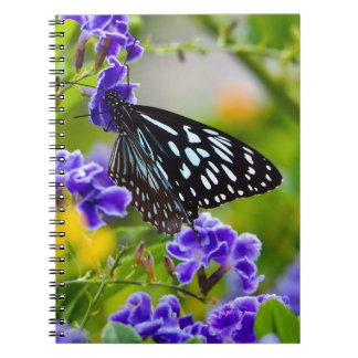 Blue tiger butterfly notebook