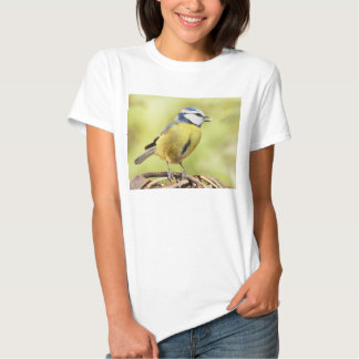 Blue tit bird tee shirt
