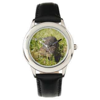 Blue_Tongue_Lizard_Kids_Black_Leather_Watch Wrist Watch