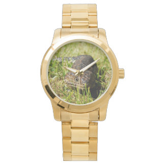 Blue_Tongue_Lizard_Large_Unisex_Gold_Watch Wrist Watches
