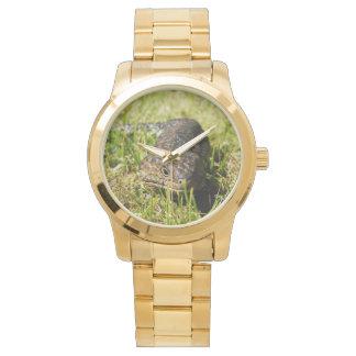 Blue_Tongue_Lizard_Large_Unisex_Gold_Watch Wrist Watches