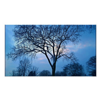 Blue Tree Art Poster