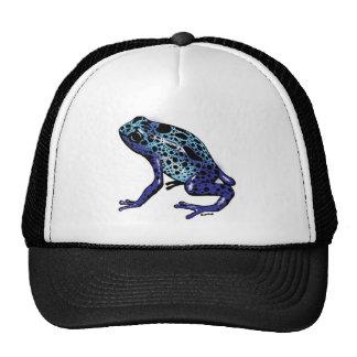 Blue Tree Frog Cap