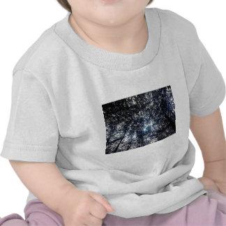 Blue Tree Line T Shirt