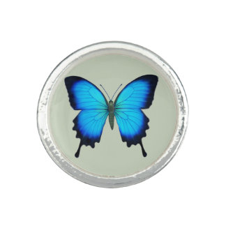 Blue Ulysses Butterfly Sterling Ring
